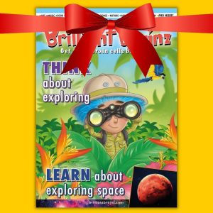 Brilliant Brainz Children's Magazine Gift