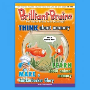 Think About Memory Brilliant Brainz Children's Magazine Gift